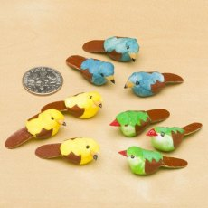 Coloured Bird - Pack of 9